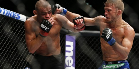 T.J. Dillashaw (R) battles Renan Barao (Esther Lin/MMA Fighting)
