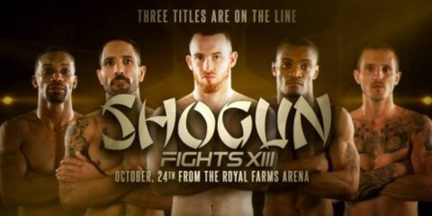 shogun-fights-13
